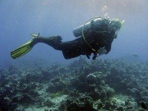NickGregan Scuba Diving